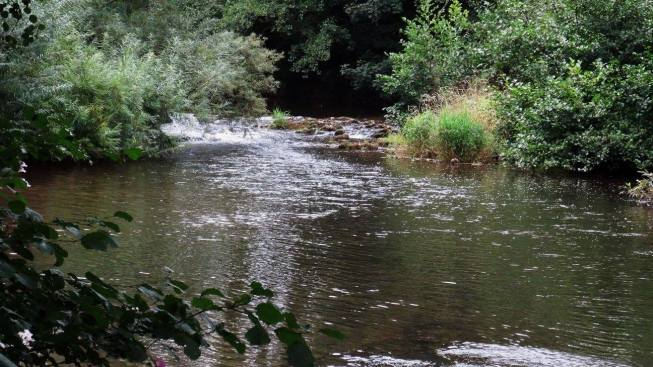 Summer drought levels on Lower Monnow.