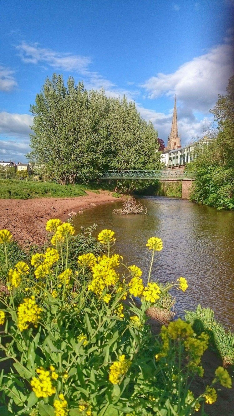 image of the river monnow